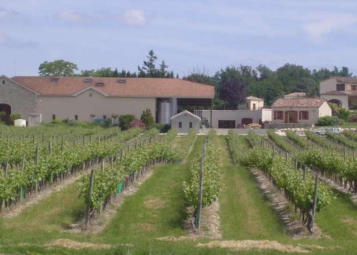 image de Balade à Cheval et visite du domaine viticole du Grand Mayne