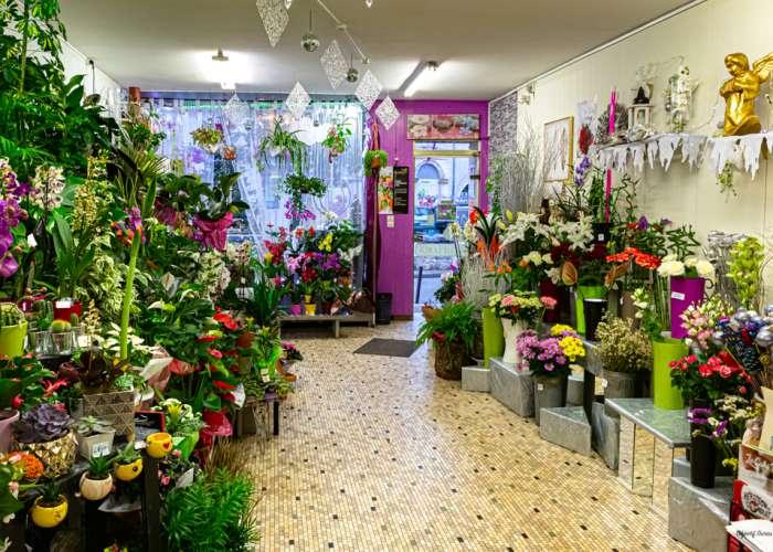 image de Chez Armelle - Fleurs Plantes et cadeaux