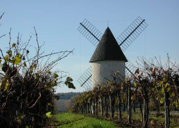 image de Villeneuve-de-Duras, à l'orée de la Gironde