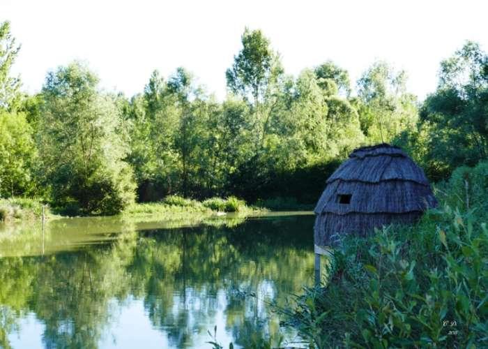 image de Lac de l'Escourroux