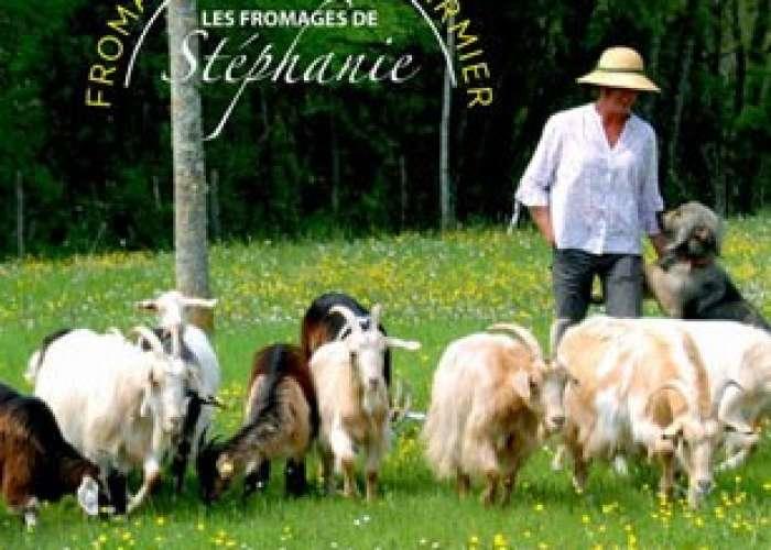 image de Les chèvres de Stéphanie