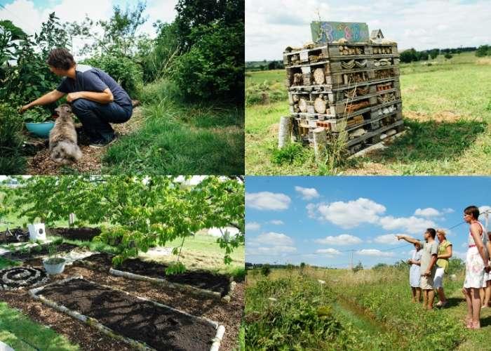 image de Jardin simply permaculture