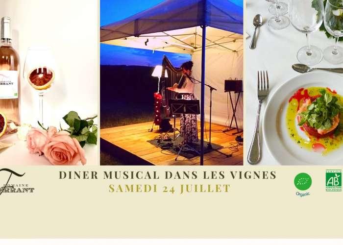 image de Dîner musical dans les vignes au domaine de Ferrant concert harpe électrique