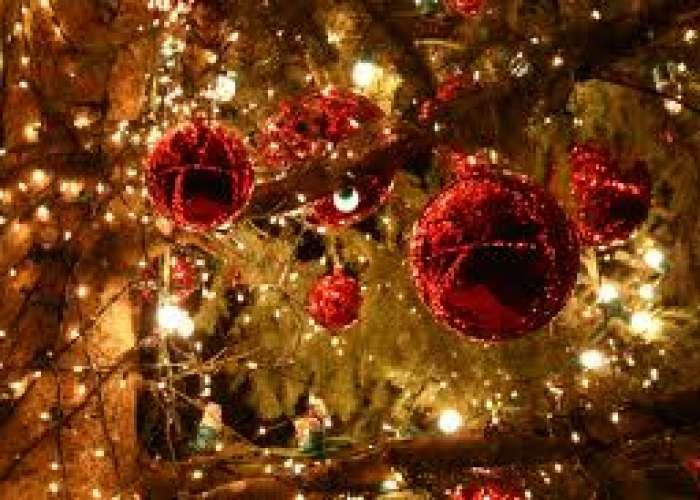 image de Repas Saint Sernin fête Noël