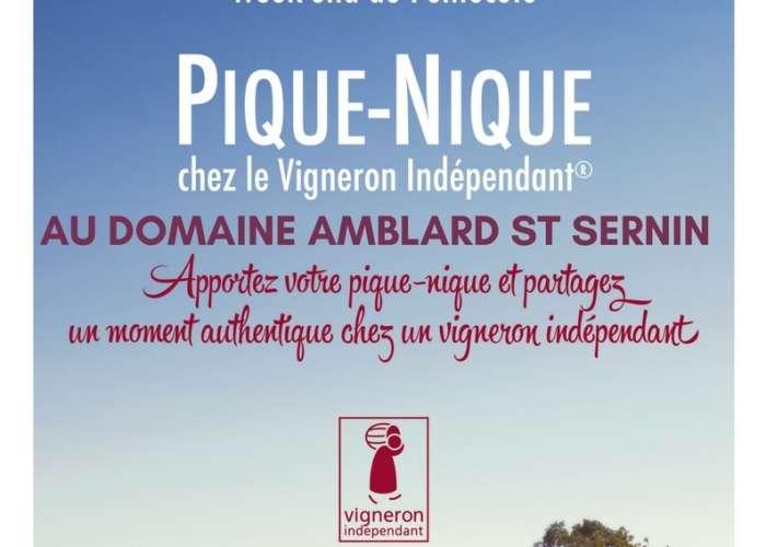image de Pique-nique chez le vigneron au Domaine Amblard