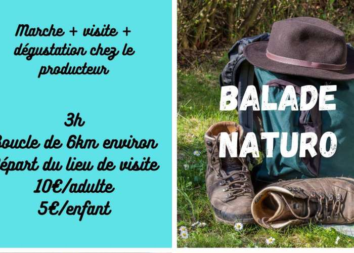 image de Balade Naturo et découverte