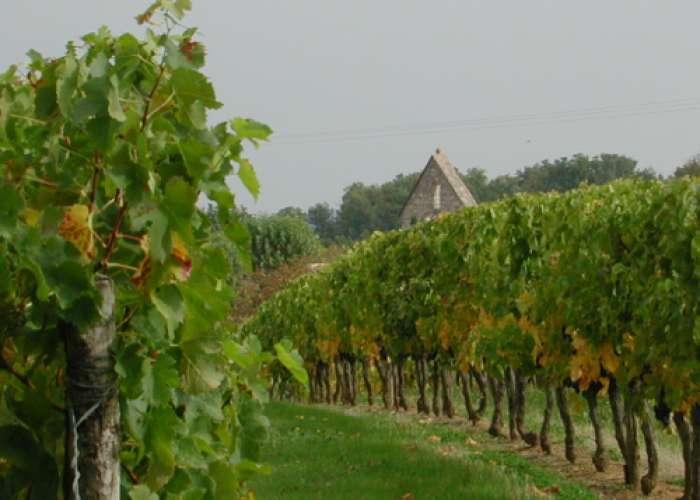 image de Loubès-Bernac, aux confins de la Gironde et de la Dordogne